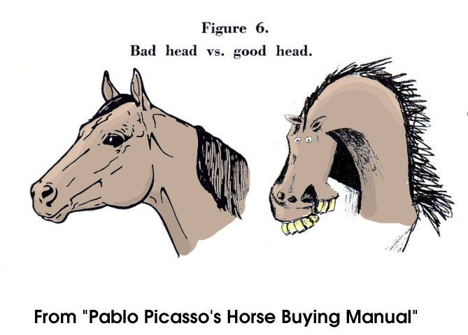 Pablo Picasso's Horse Buying Guide